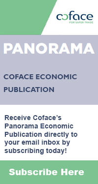 Coface Panorama Subscription